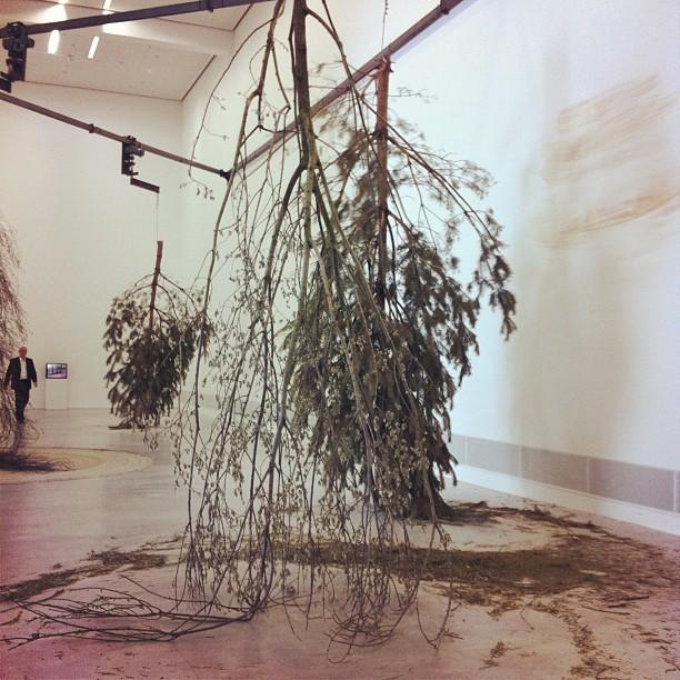 Michael Sailstorfer (Taken with  Instagram  at Berlinische Galerie)