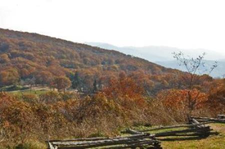 View of autumn foliage at Wintergreen Resort