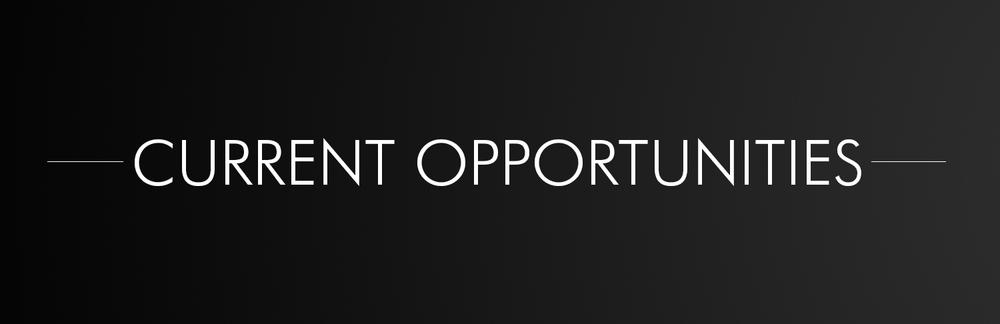 CURRENT OPPORTUNITIES banner.jpg