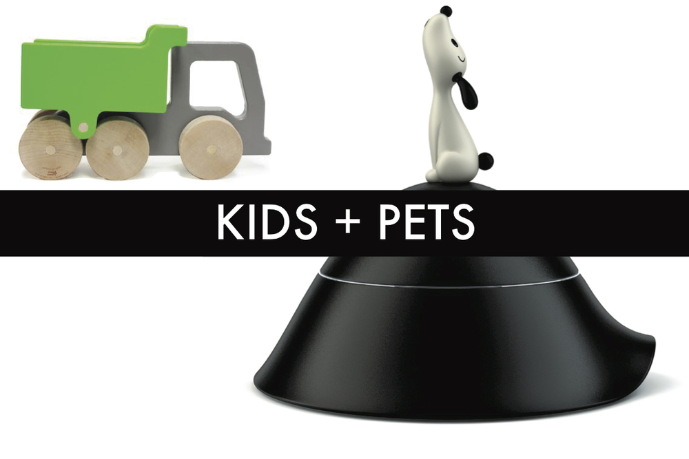 modern kids toys and pet dishes phoenix