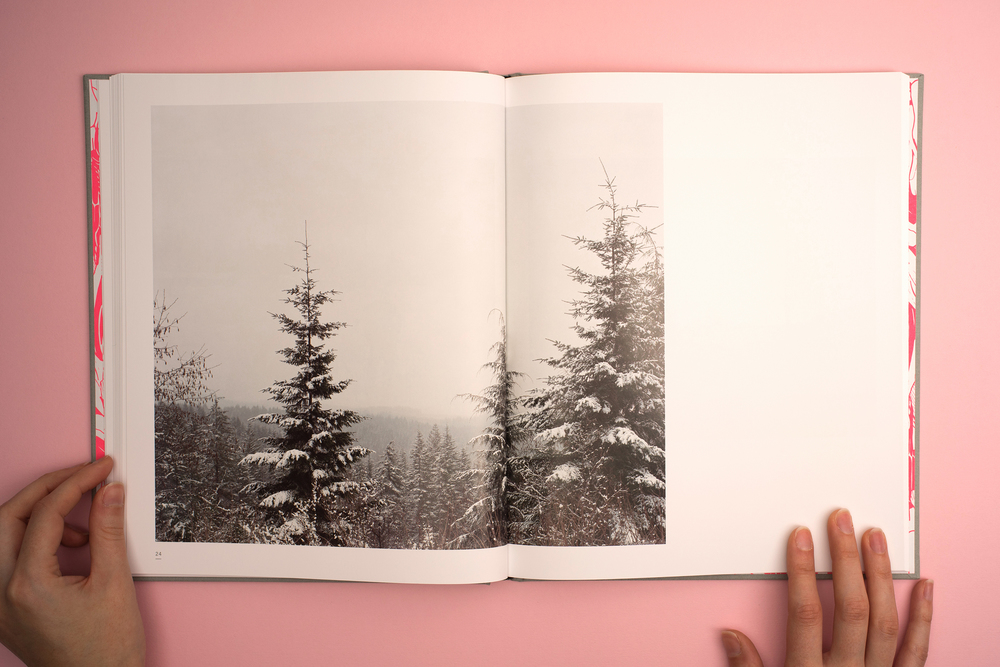 A Pink Flamingo, Jack Latham photobook. Photos taken across America following the Oregon trail. Photograph of snow covered pine trees.