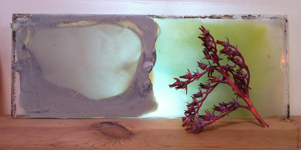 wax (encaustic) on glass