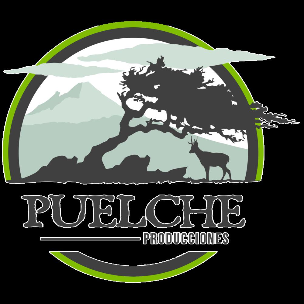 logo puelche-01.png
