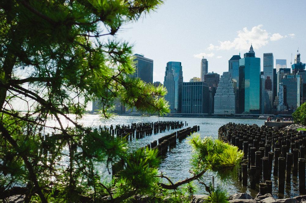 10 cosas para hacer en new york 963.JPG