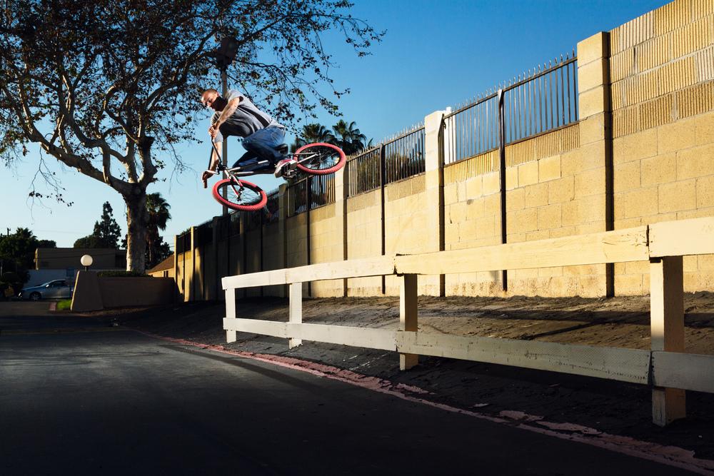 Eric Lichtenberger Wallride Pullover DIG BMX