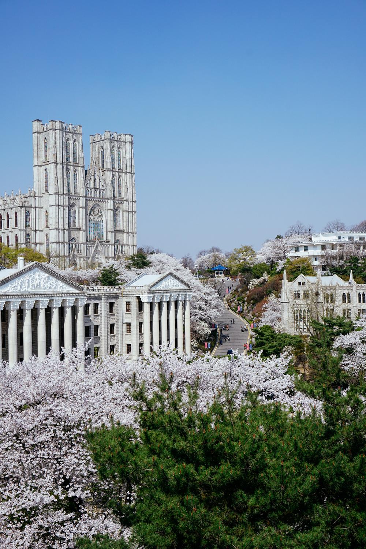 KyungHeeUniversity07.jpg