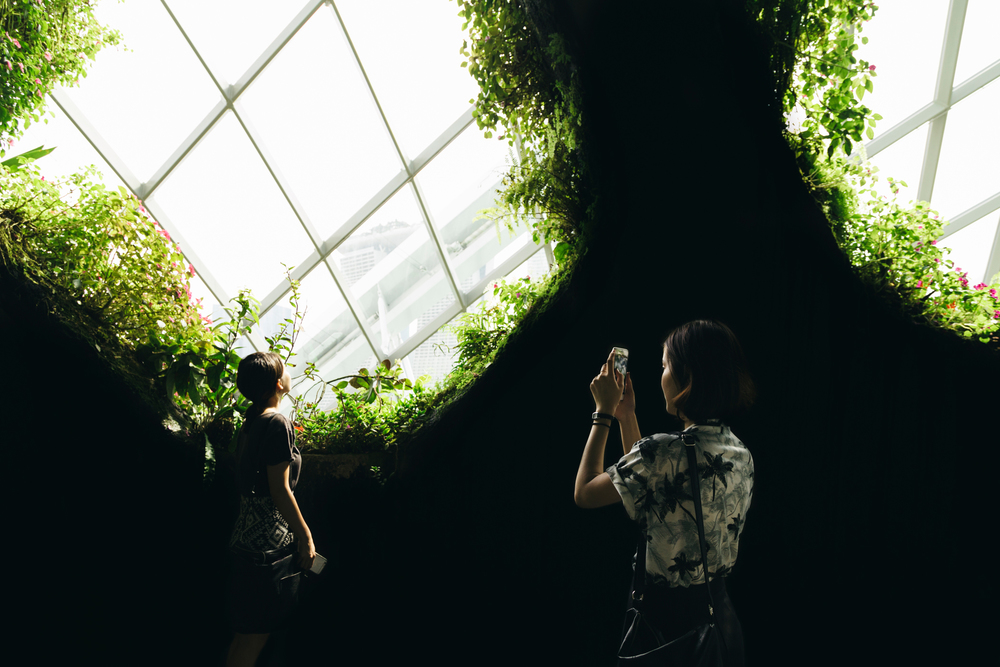 Greysuitcase Singapore Travel Diary: Cloud Forest, Gardens by the Bay, Singapore.