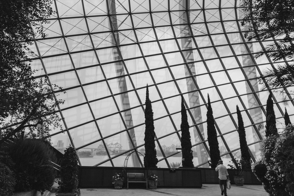 Greysuitcase Singapore Travel Diary: Flower Dome, Gardens by the Bay, Singapore.