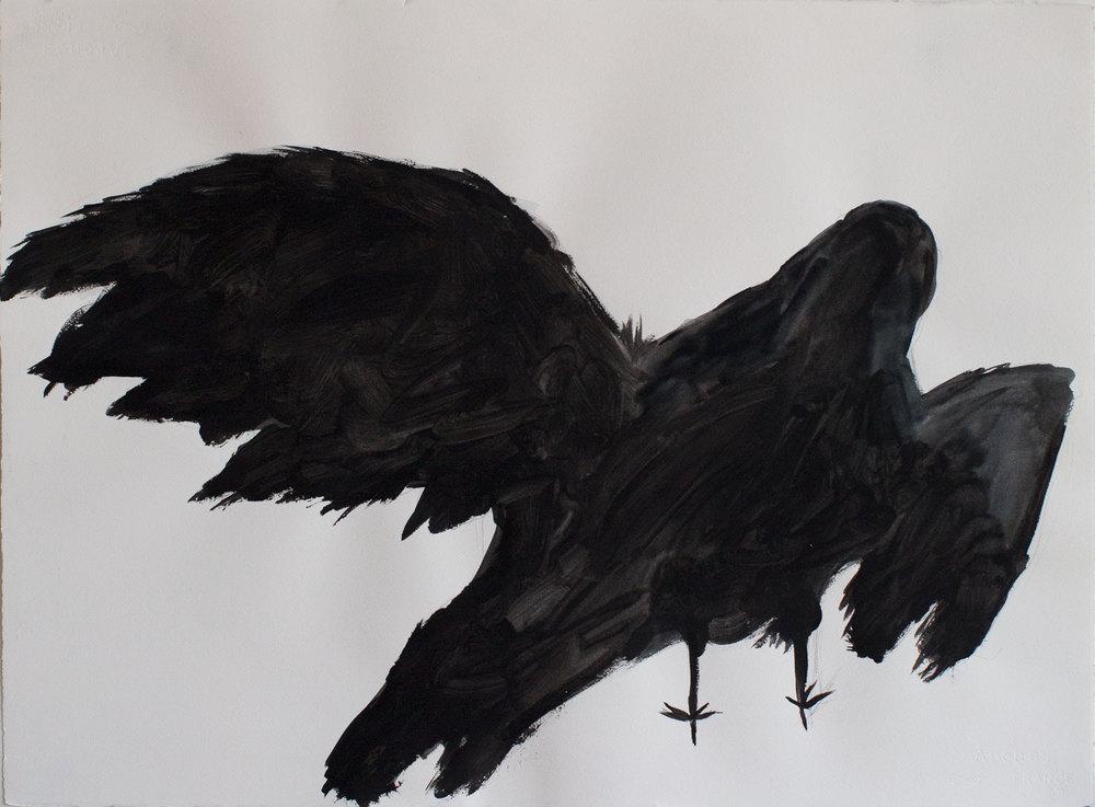 "Crow 2_30""x22"""