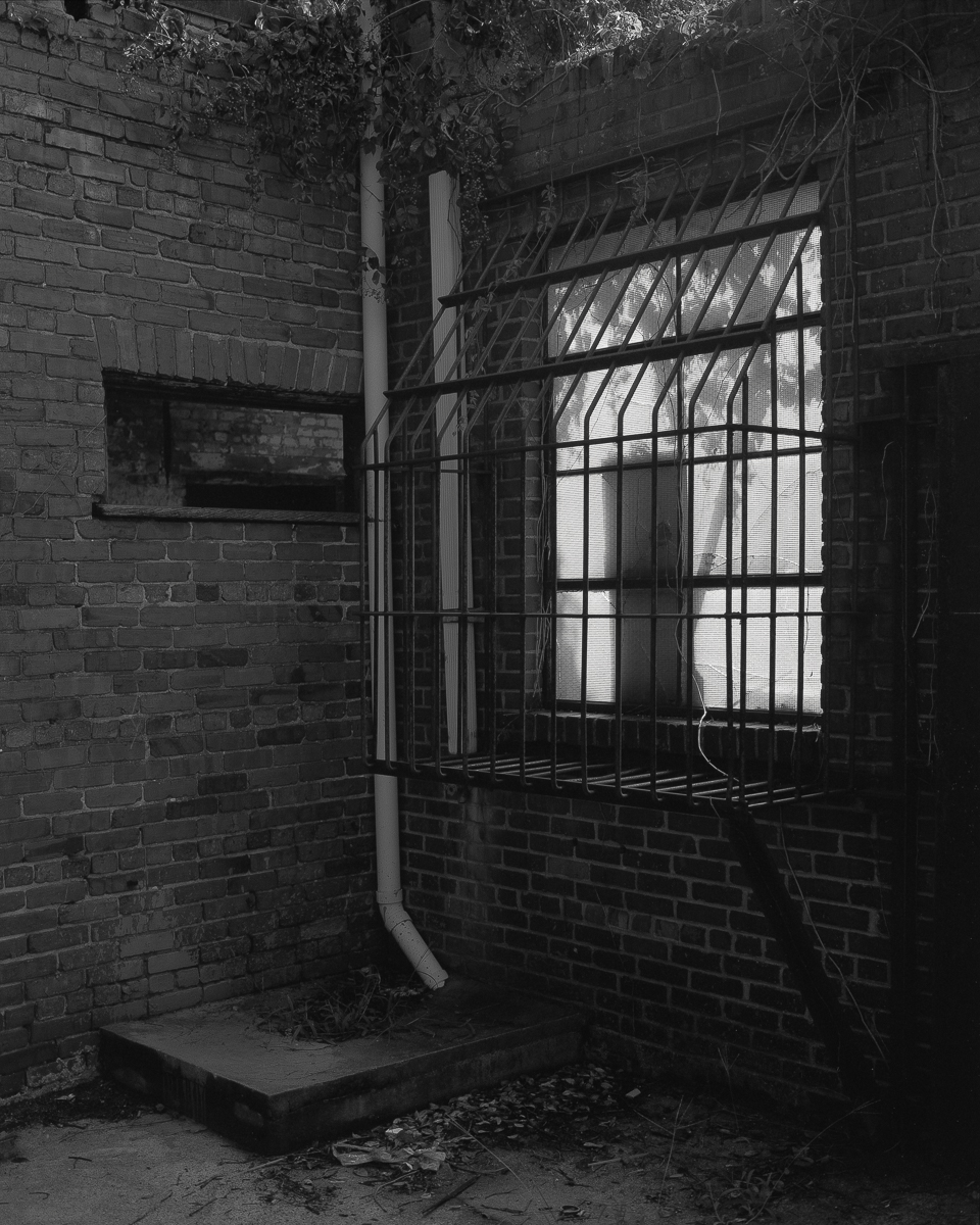 goldsboro-05.jpg