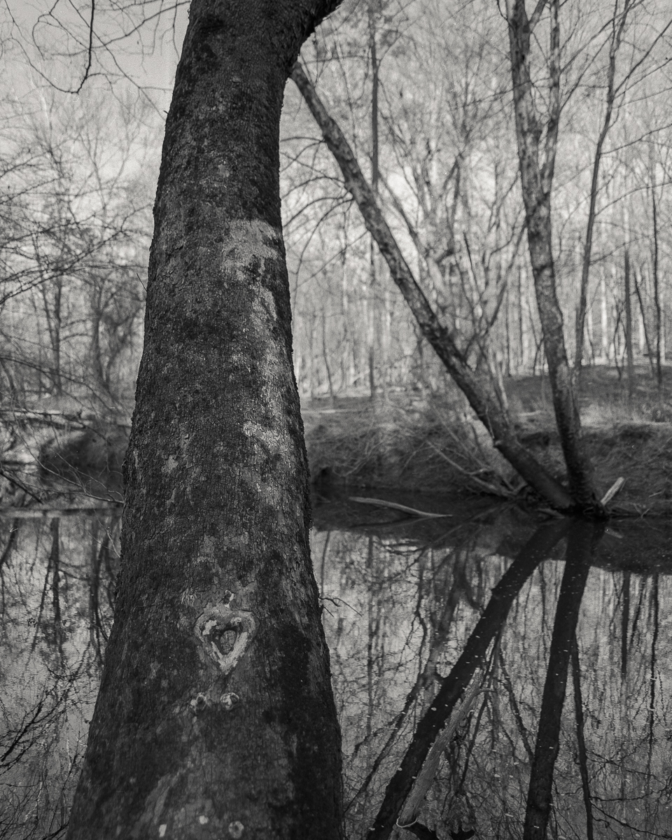 river-01-3.jpg