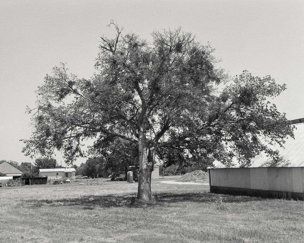 texas-52.jpg