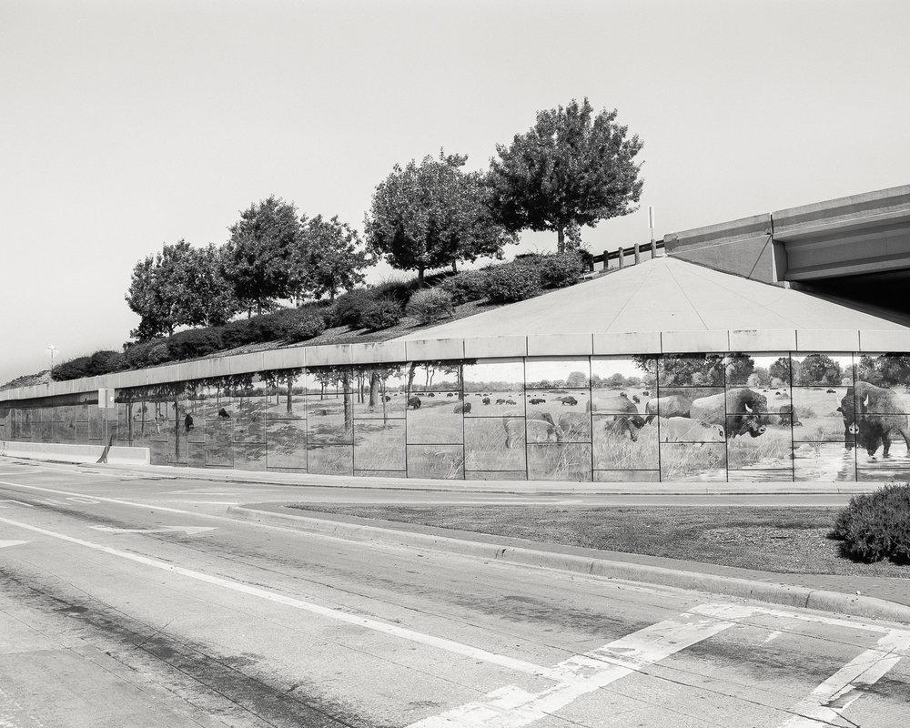 texas-74.jpg