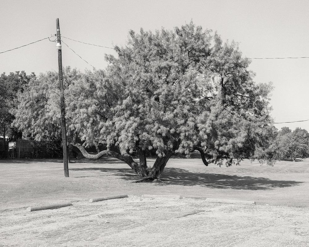 texas-2400-7.jpg
