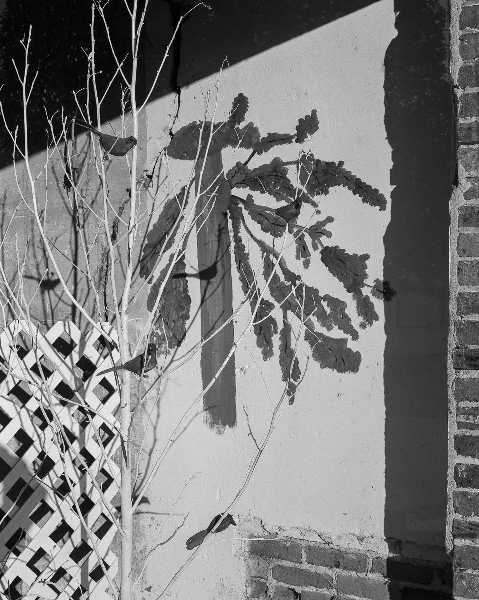 homes-03-Web.jpg