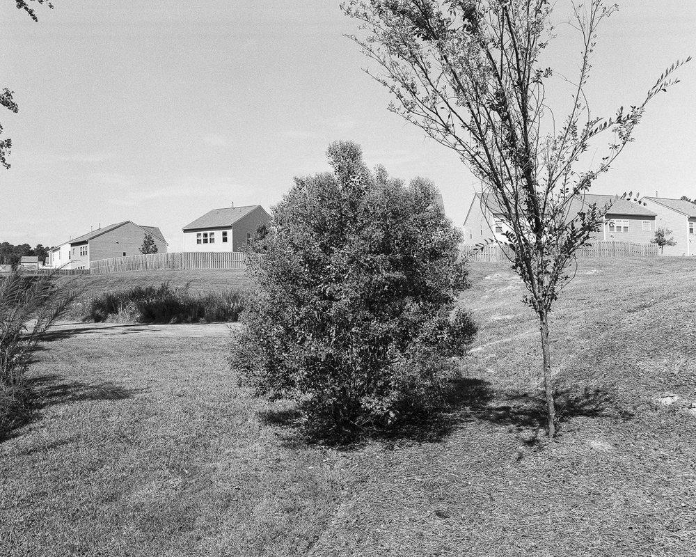 homes-60-Web.jpg
