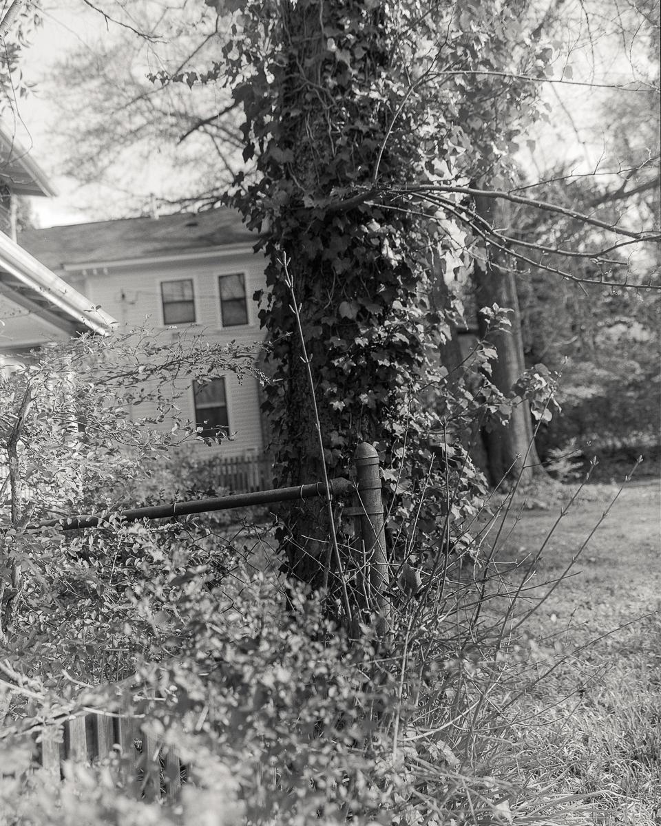 homes-08-Web-3.jpg