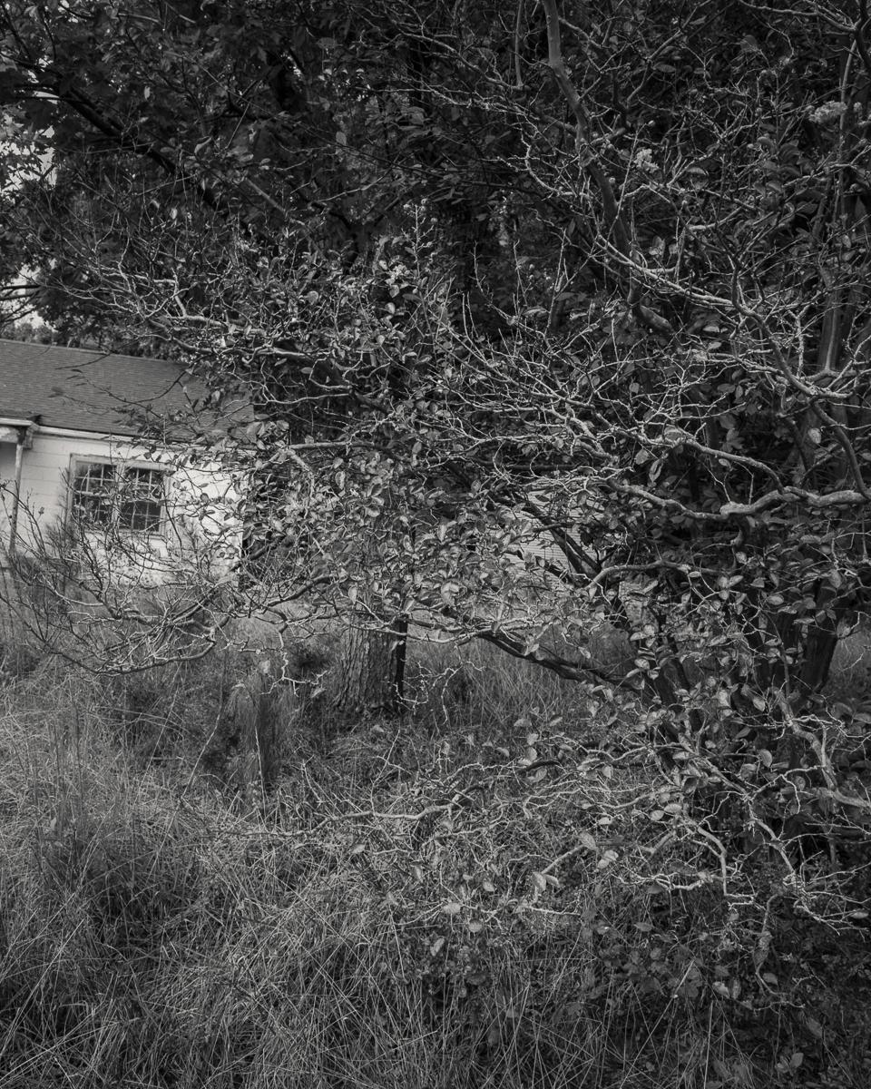 homes-01-Web-2.jpg