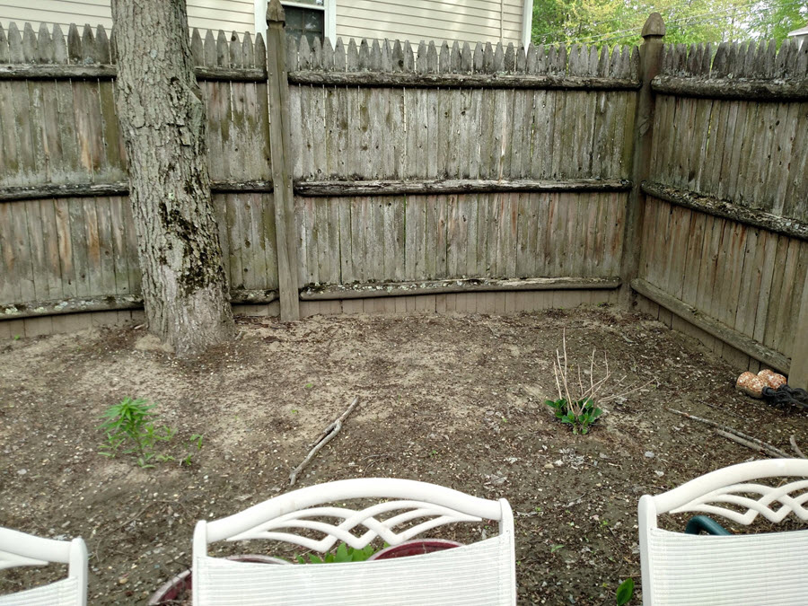 Before: 11' x 25' bed of compacted soil with few plantings