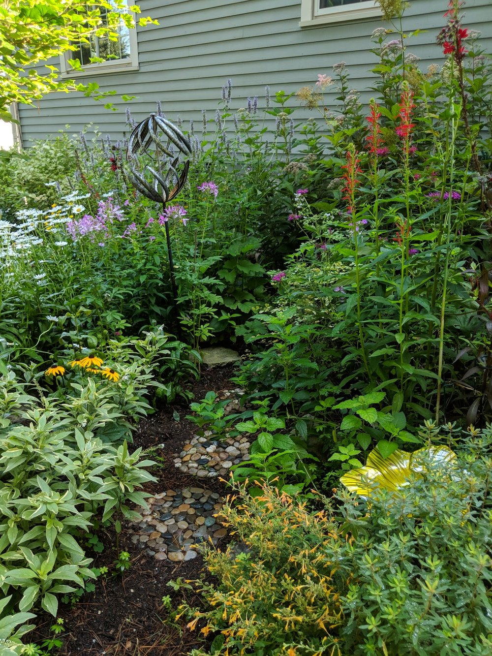 Aug 6: Stone path leads to 6' tall Joe Pye Weed in the back