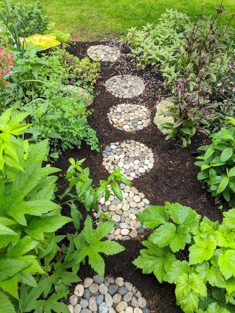Jun 5: This lush garden has awakened