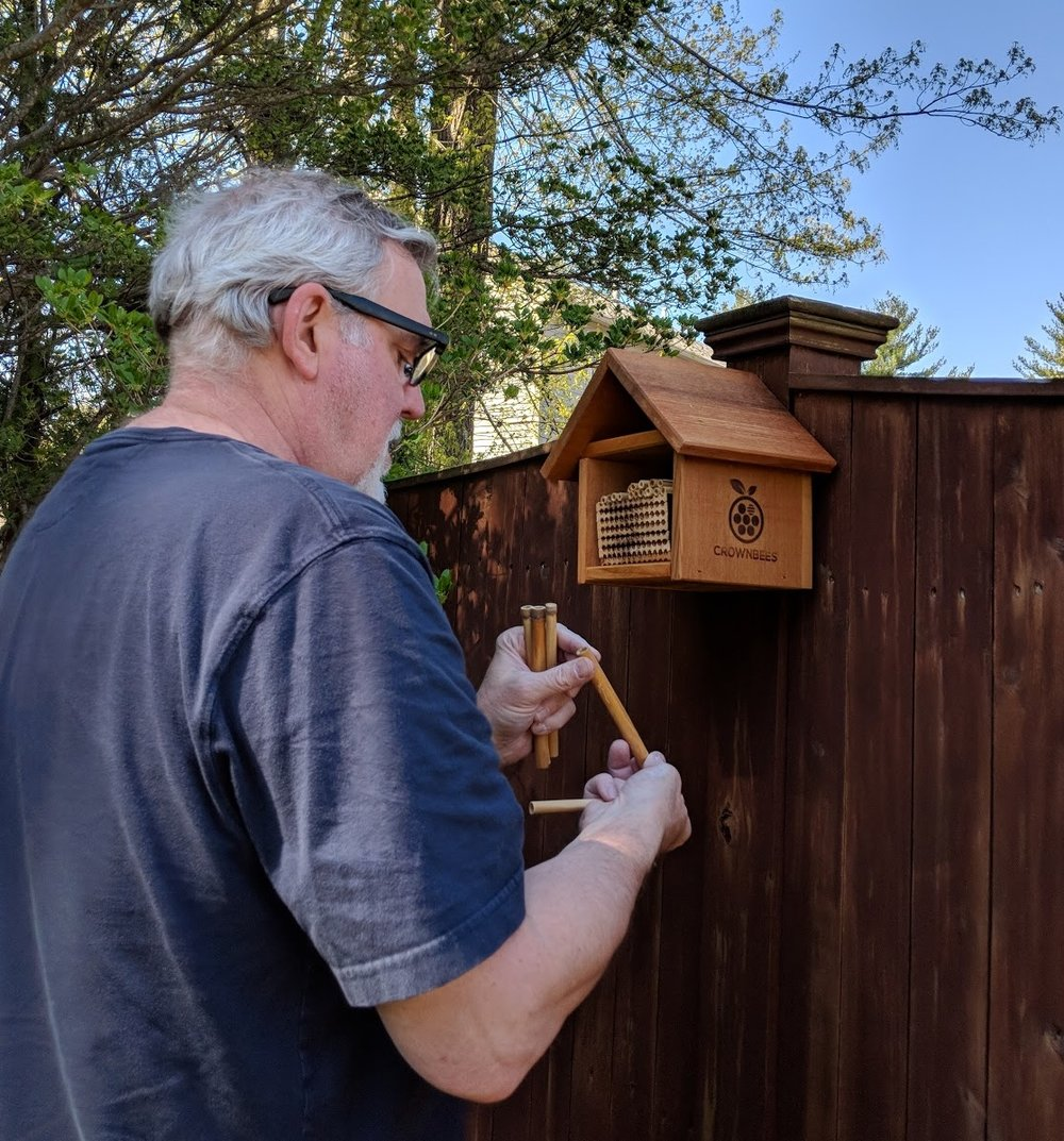 Dave puts out a Mason Bee house in spring!