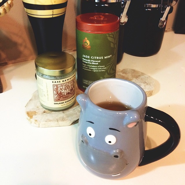 Nighttime tea routine: Teavana tea, the only honey that should ever exist, and my hippo mug. @ianmichael89 #teavana