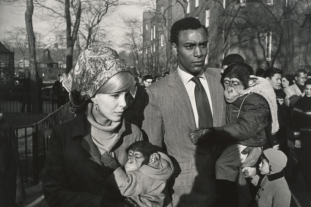 Garry Winogrand, Central Park Zoo, 1967