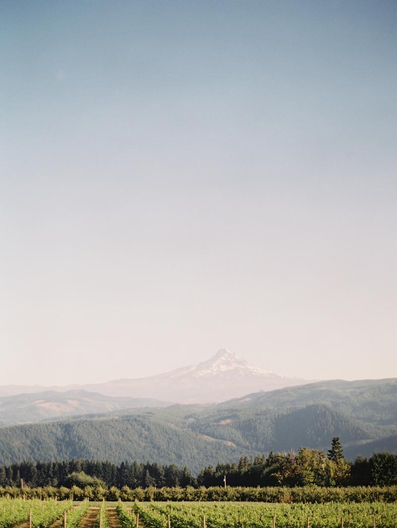 Linnea-Paulina-Film-Wedding-Photographer-Mt-Hood-Gorge-Crest-001.jpg