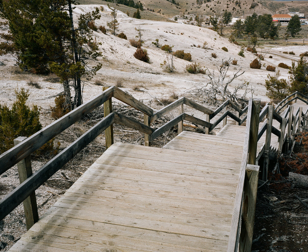 Wooden stairs of the boardwalk in Yellowstone's Mammoth Hot springs