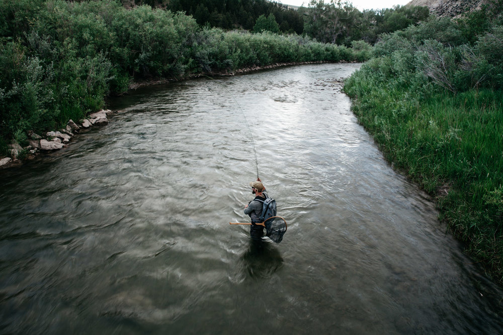 Fisherman in a river at dusk in the summer