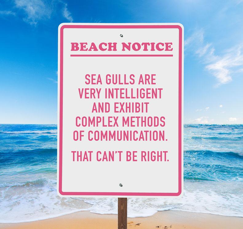 CHC100-8010---Beach-Notices_April20152.jpg