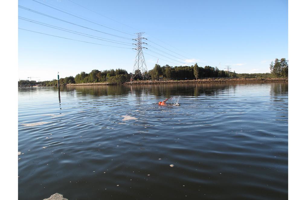 test swim.jpg
