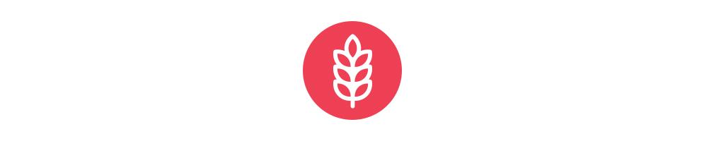 icon-Tip-1-Fibre.jpg