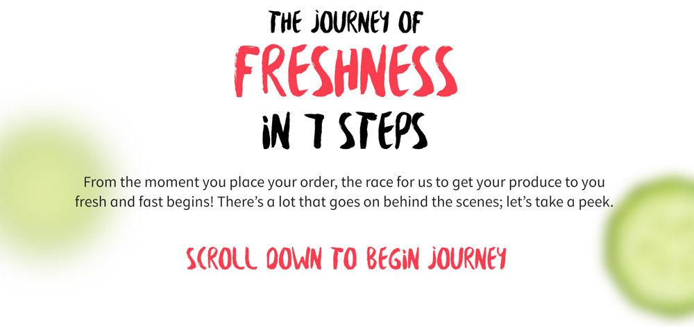 freshness_journey.jpg