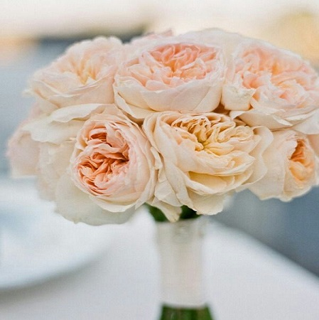 The ROSE is the most traditional of all wedding flowers.  These beauties have the meaning of 'Love'.  Every colour has its own unique meaning.  White symbolizes 'purity' and Red means 'true love'.