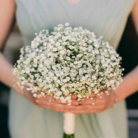 GYPSOPHILA signifies 'festivity', and is fast becoming one of the most popular wedding flower choices.