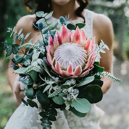 Dating back 300 million years the PROTEA symbolizes 'courage' and 'diversity'.  It was named after the Greek god Poseidon's son, Proteus.