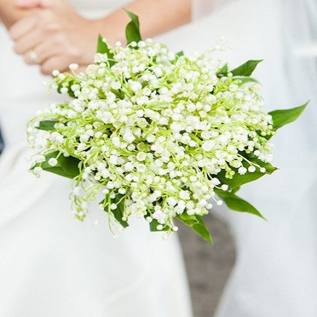 With it's beautiful scent and dainty blooms, LILY OF THE VALLEY represents 'sweetness' and 'purity of the heart'.