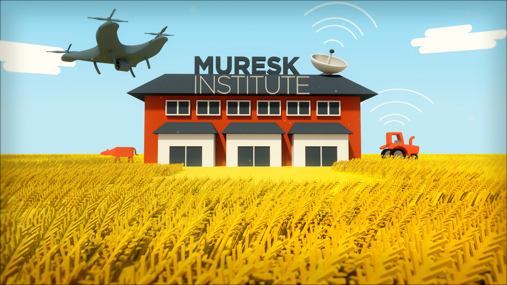 MureskV01CompHero (00722).jpg