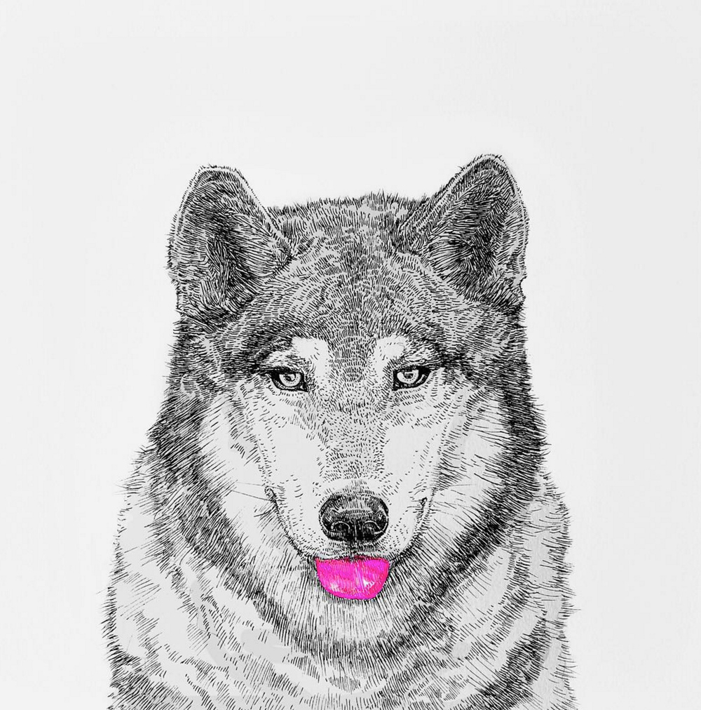 NikiPilkington_Wolf.jpg