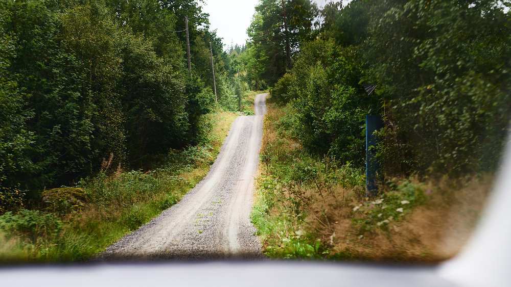 an image from inside the car as we drove through the wilds of the Swedish countryside to discover new and vintage rugs
