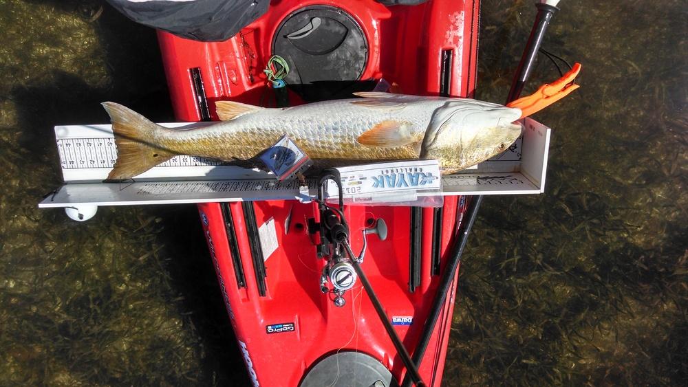 Oct. 2013 40+ redfish tournament.jpg