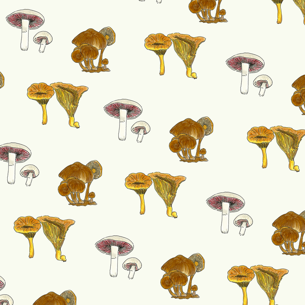 Edible Mushrooms by Kate Zaremba