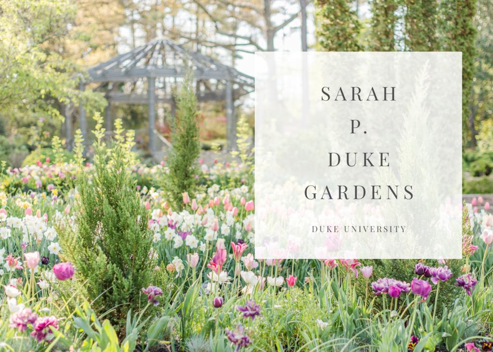 duke-university-gardens-durham-north-carolina-photographer