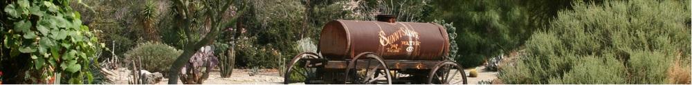 tank 6.jpg