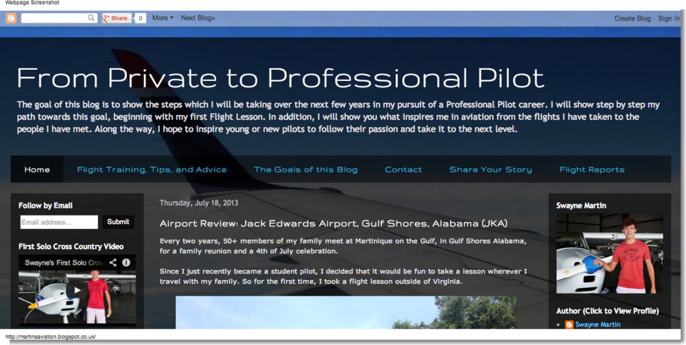 Swayne Martin: Martins Aviation - From Private to Professional Pilot