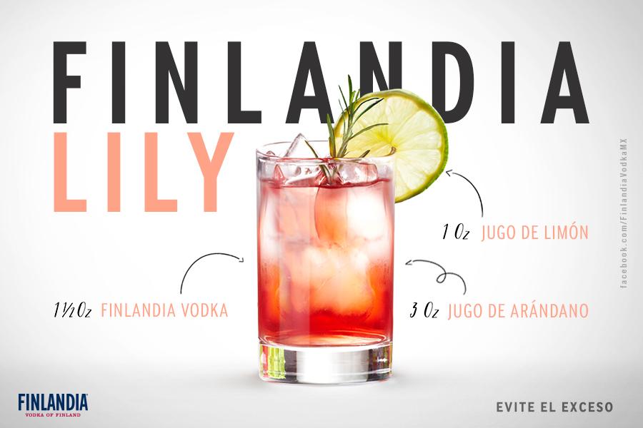 Alejandro-Torres-Desgner-Finlandia Vodka Recipe 2.jpg