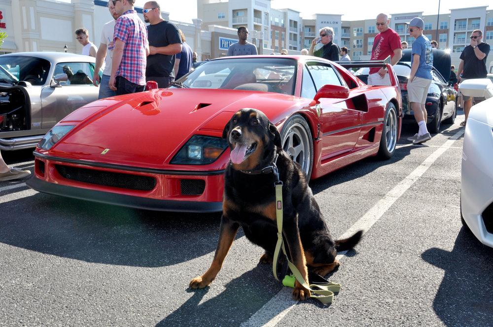 1 Ferrari F40.jpg