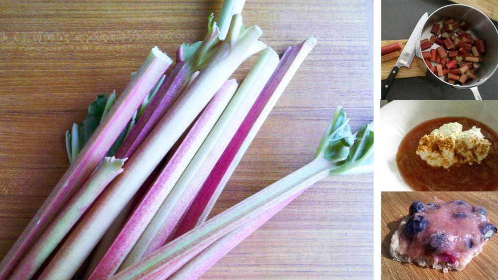 rhubarb recipe, berries whiskey compote, grassfed ricotta